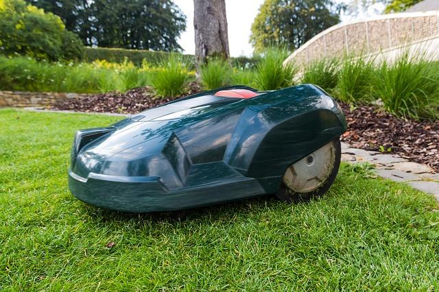 Roboty do koszenia trawy – kosiarki samojezdne w Krakowie. Jak zabrać się za karczowanie krzaków?