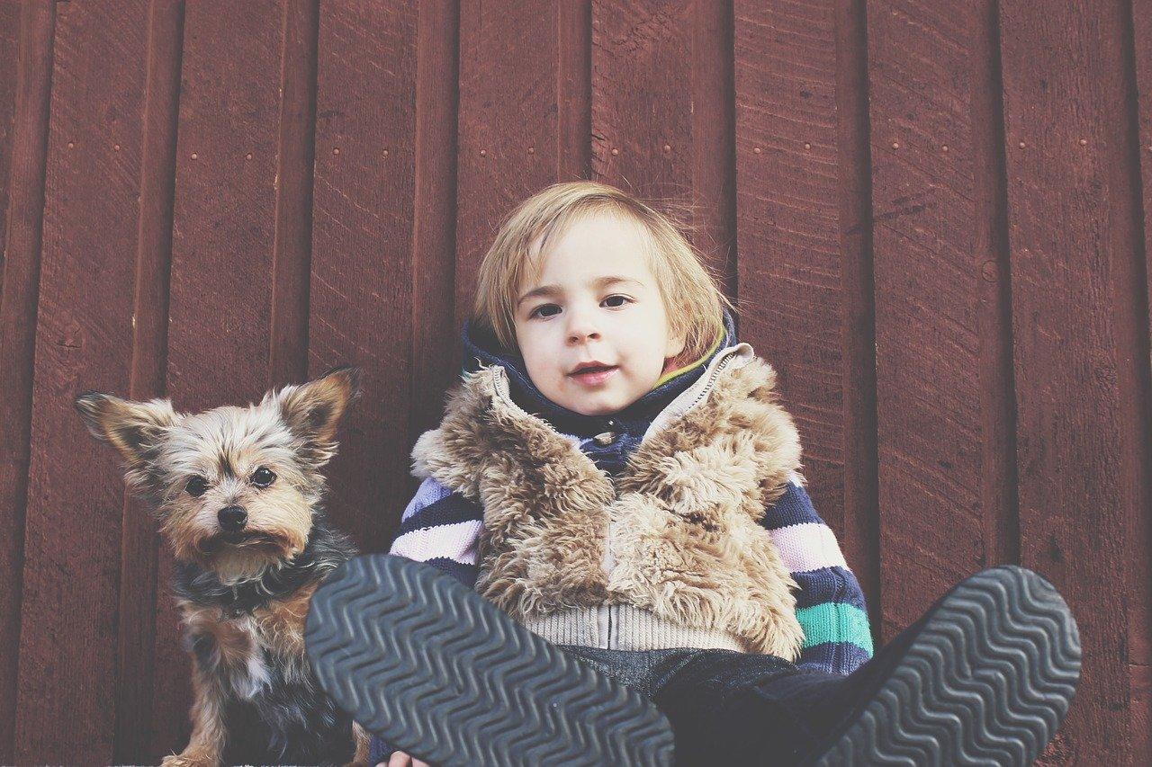 Pies to najlepszy przyjaciel człowieka